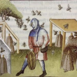 Medieval Hood Curt – Ideal For LARP, SCA and Costume